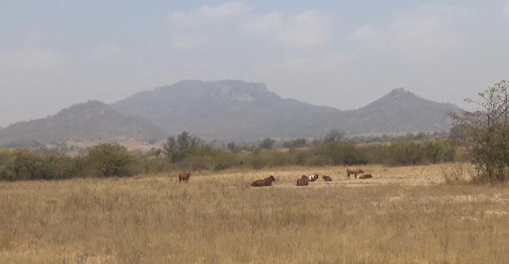 Northern Zimbabwe